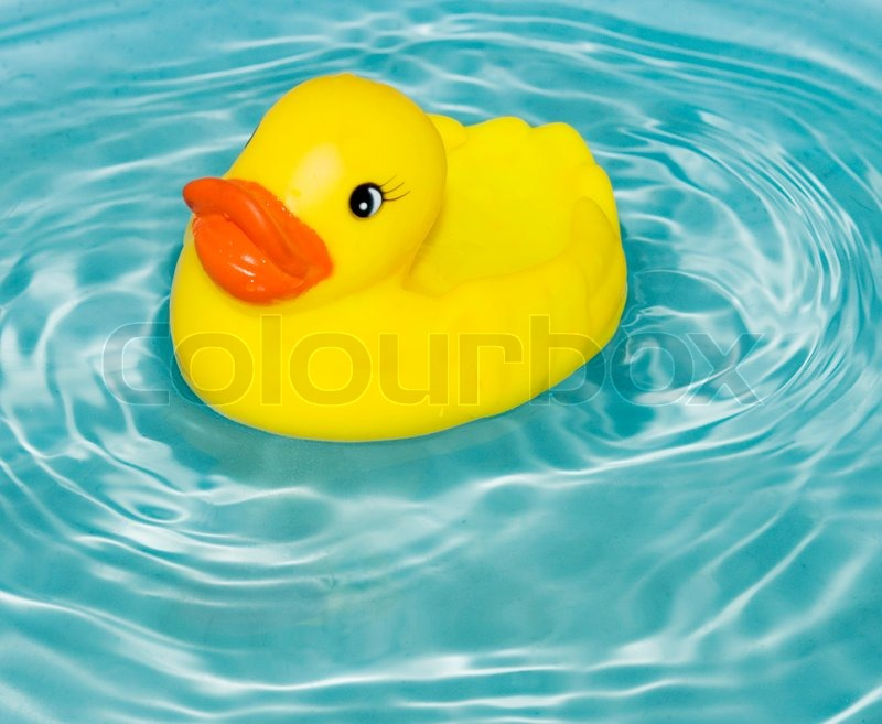 Yellow rubber duck floatin on water | Stock Photo | Colourbox