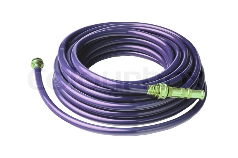 Beau Violet Garden Hose Coiled With Spray Nozzle Isolated On White | Stock Photo  | Colourbox