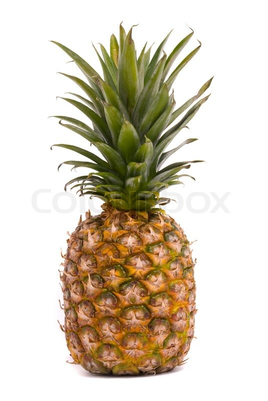 A whole pineapple isolated on a white background stock for Pineapple in the ground