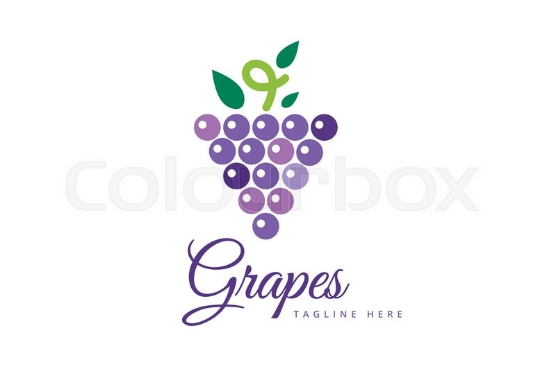 Grapes Vector Isolated Grapes Icon Grapes Logo Grapes Wine Or