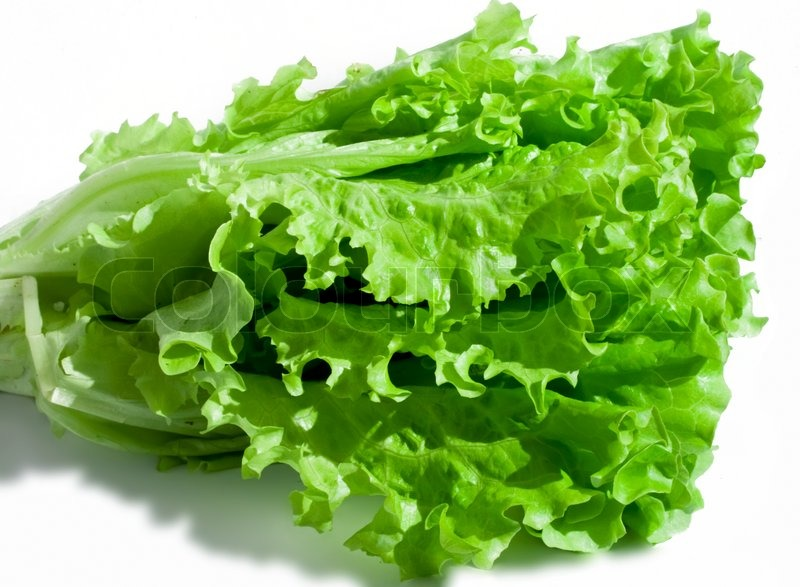 Stock image of 'Fresh green Lettuce salad on white isolated background ...