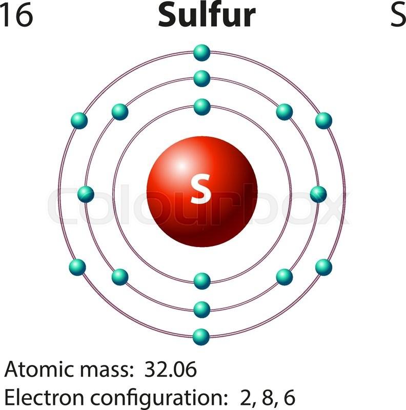 Diagram Representation Of The Element Sulfur Vector Image Manual Guide