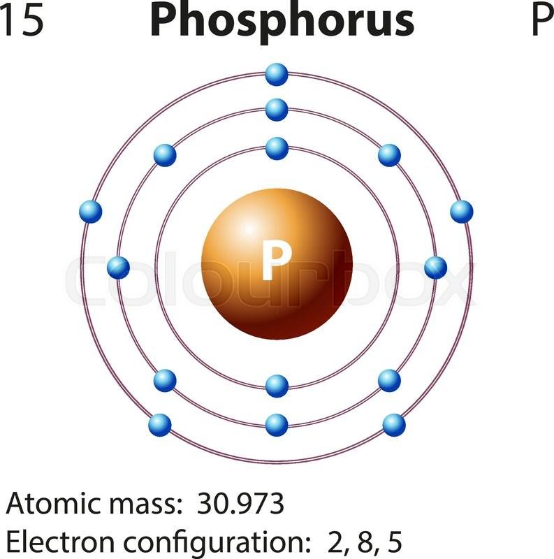 Diagram Representation Of The Element Uranium Illustration Manual Guide