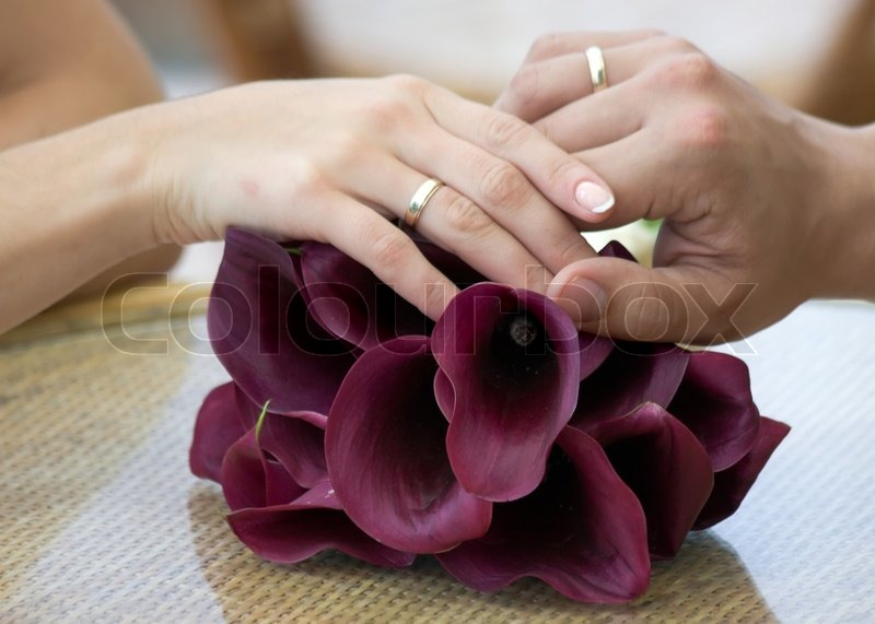 hand of the groom and the bride with wedding rings on the flowers stock photo colourbox - Wedding Rings On Hands