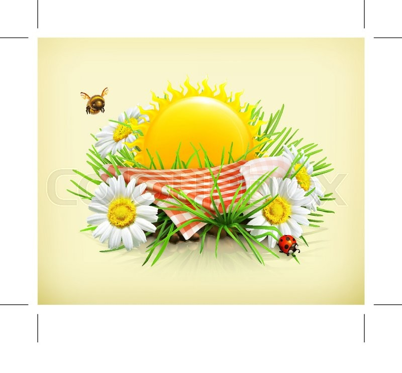 Summer, time for a picnic, nature, outdoor recreation, a tablecloth and sun behind, grass, flowers of camomile, a ladybug and a bee in the garden, vector illustration showing the summertime, vector