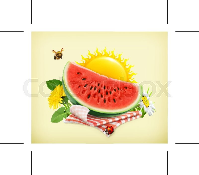 Summer, time for a picnic, watermelon, nature, outdoor recreation, a tablecloth and sun behind, grass, flowers of camomile and dandelion, vector illustration showing the summertime, vector