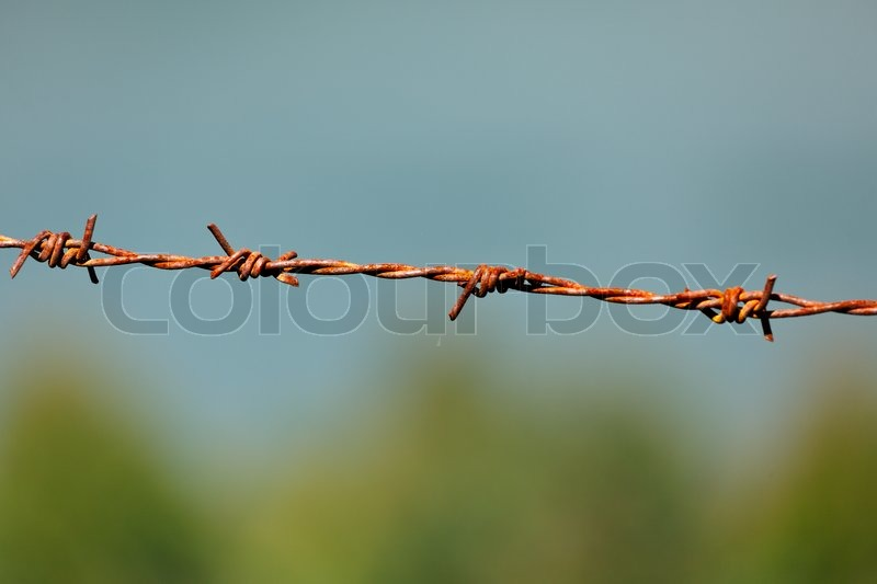 Border fence of rusty barbed wire on blurred blue sea background ...