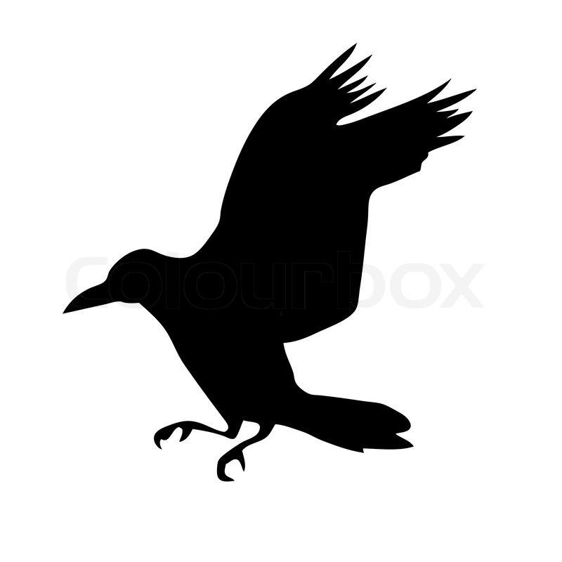 Vektor silhouette der rabe auf wei em hintergrund vektorgrafik colourbox - Dessin corbeau facile ...