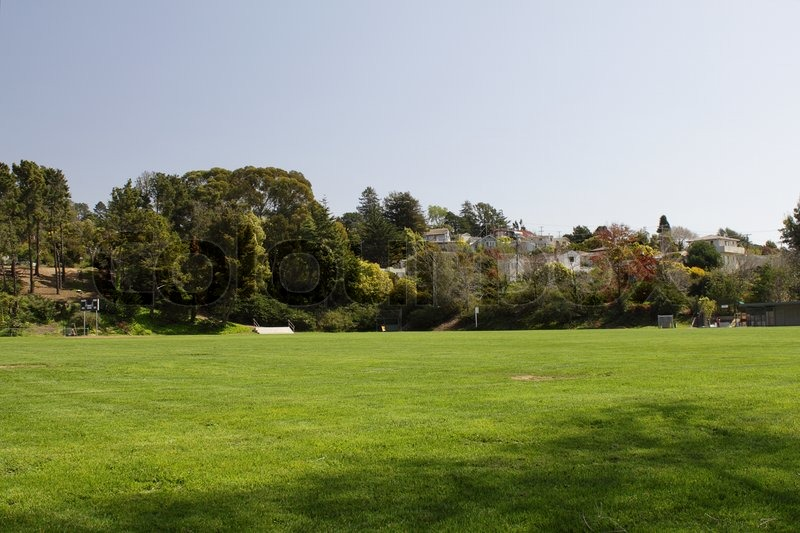 Field of green grass with trees and houses on background ...