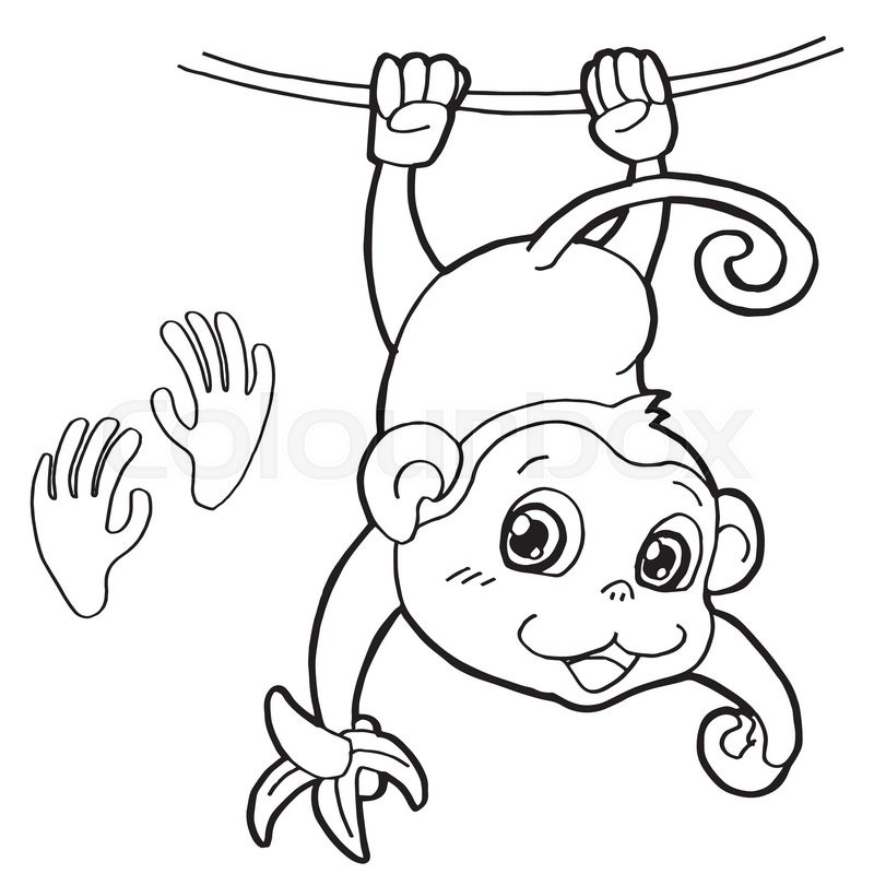 Image of monkey with paw print