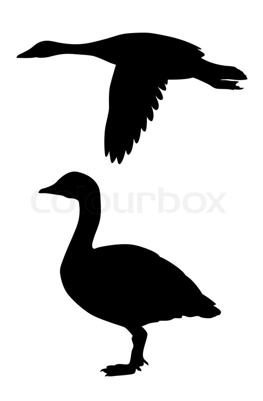 Duck Hunting Wallpaper Vector silhouette goos...