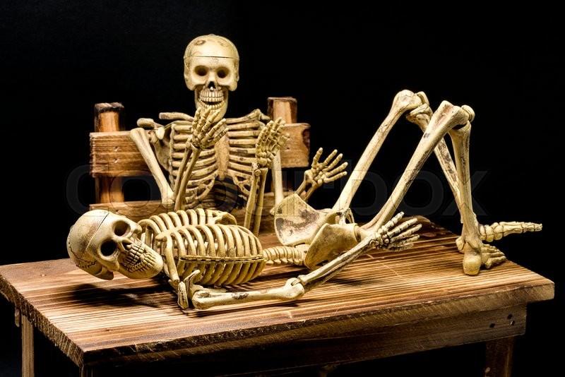 процедуры фото скелетов календарь липы семена снабжены