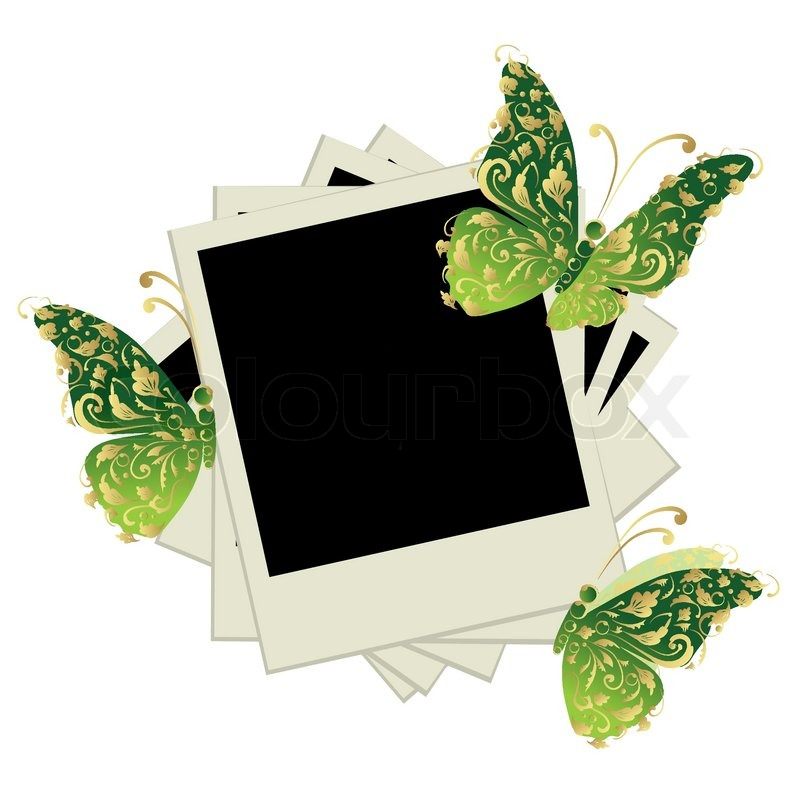 pile of photos insert your pictures into frames butterfly decoration vector