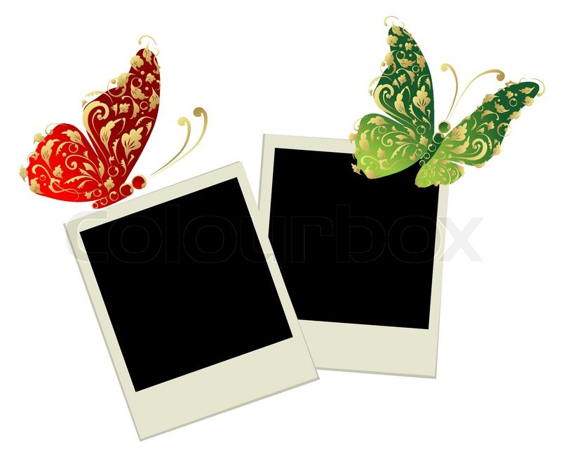 Two Photo Frames With Butterfly Stock Vector Colourbox