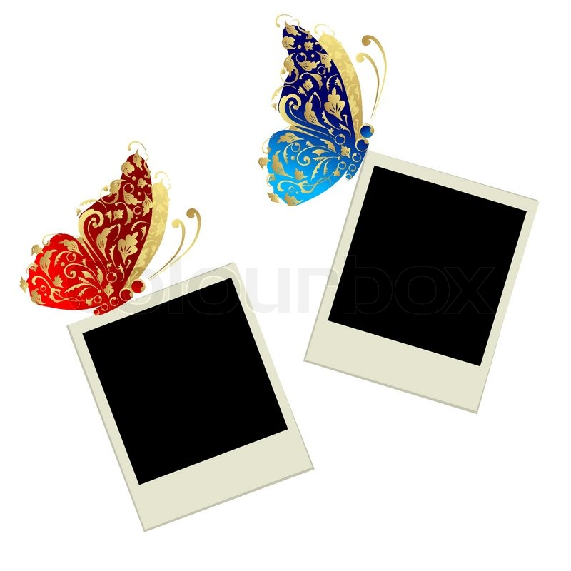 Zwei Fotorahmen mit Schmetterling Dekoration   Vektorgrafik   Colourbox