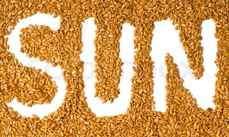 many vivid sunflower seeds with written word sun stock photo