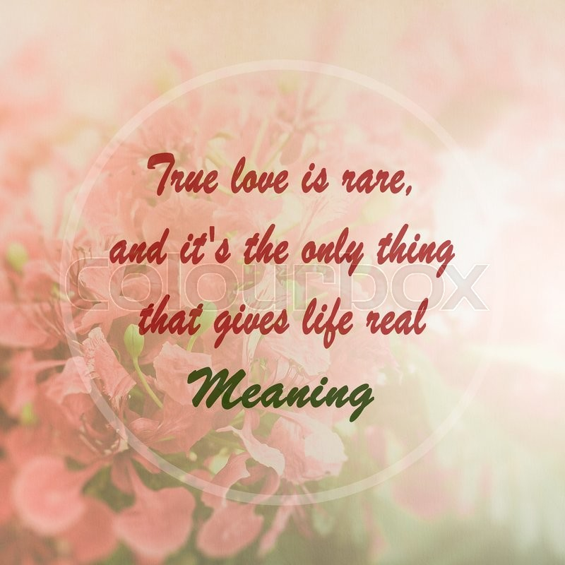 Meaningful quote on pink flower background true love is rare and meaningful quote on pink flower background true love is rare and its the only thing that gives life real meaning stock photo colourbox mightylinksfo