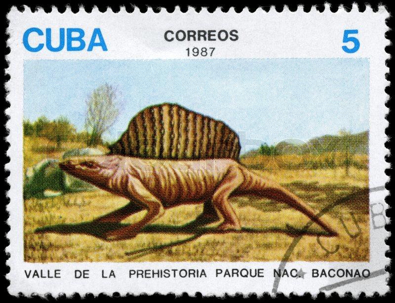 Cuba parque nacional by: felice zingarelli