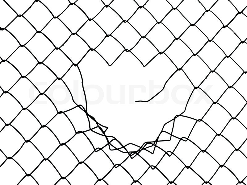 metal wire fence protection chainlink