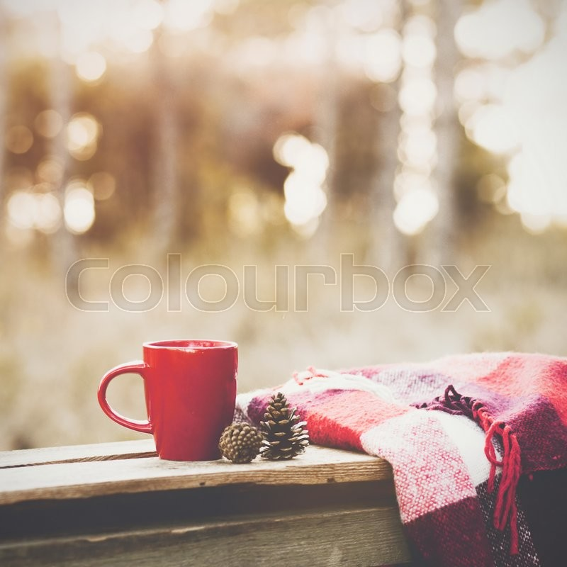 Cup of tea and warm plaid blanket on wooden rustic bench in the autumn forest. Fall weekend. Photo toned, selective focus, stock photo