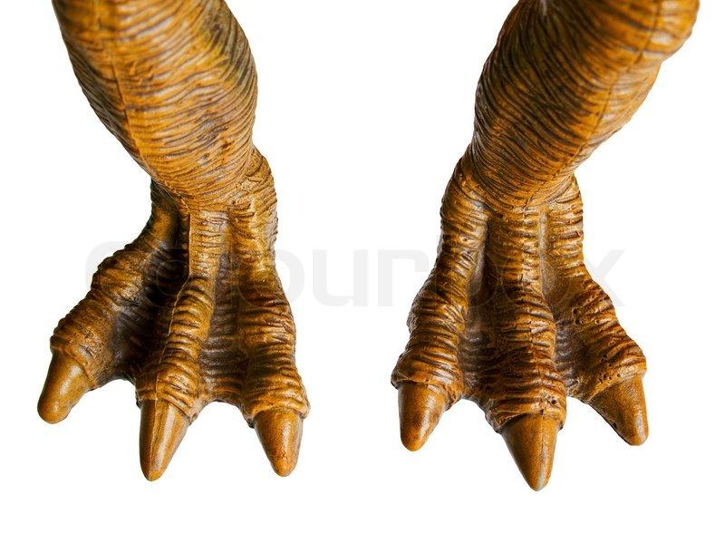 Monster Toy Or Animal Dinosaur Spooky Horror Foot Stock