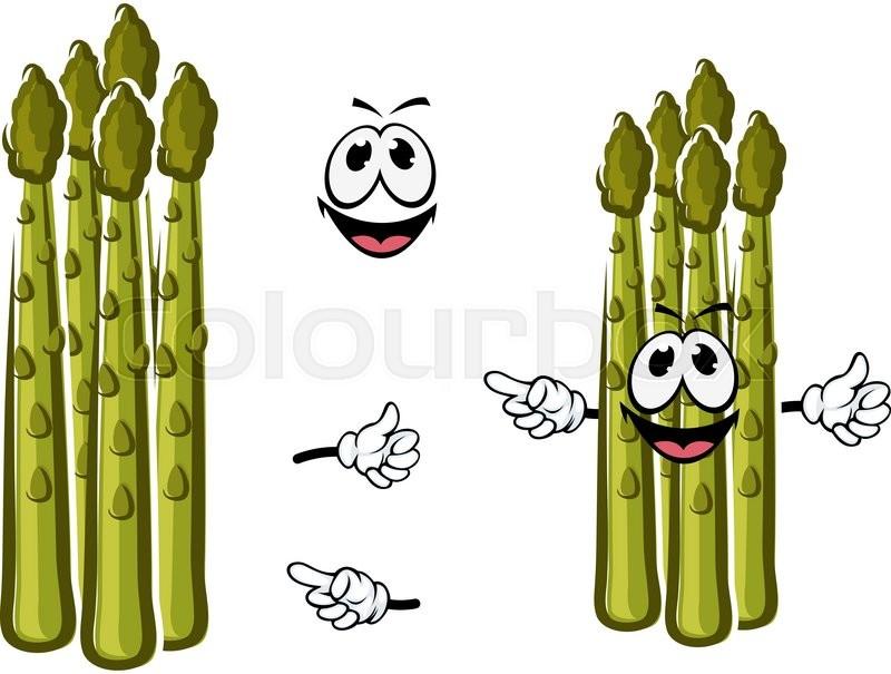 Fresh Juicy Green Shoots Of Asparagus Vegetable Cartoon