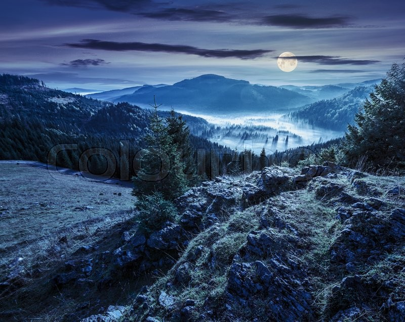 View from a rocky cliff to full of fog valley with conifer forest in high mountains of Apuseni Natural Park in Romania at night in full moon light, stock photo