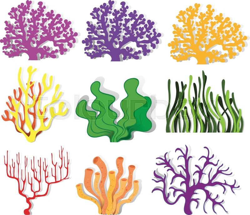 various type of coral reef illustration stock vector colourbox rh colourbox com coral reef plants clipart coral reef clipart black and white