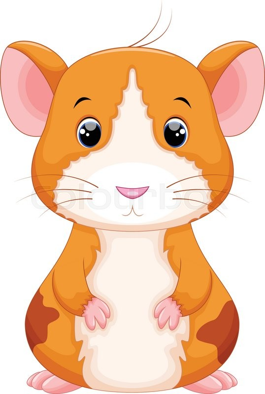 vector illustration of cute hamster cartoon isolated on white
