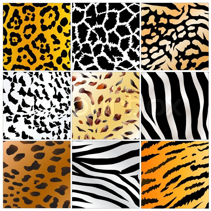 Set Of Nine Different Wild Animals Skin Patterns Stock Vector Impressive Animals With Patterns