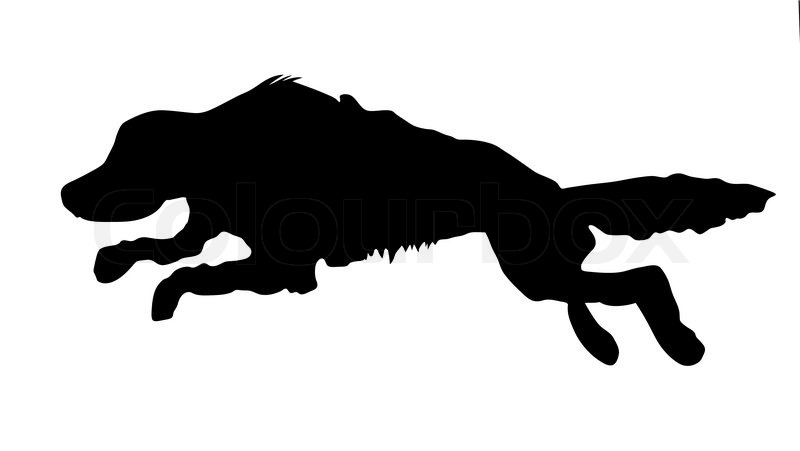 Vector silhouette of the runninging dog on white ...