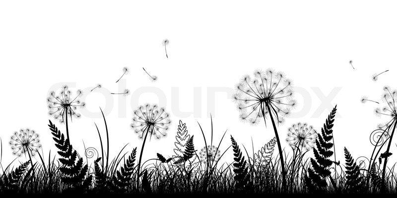Stock Vector Of Summer Field With Grass And Dandelions In Black White