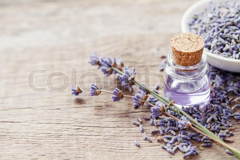 Essential lavender oil and dry lavender flowers. Selective focus, stock photo