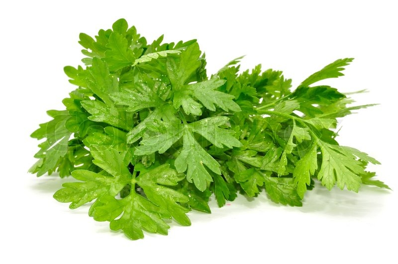 how to keep parsley fresh