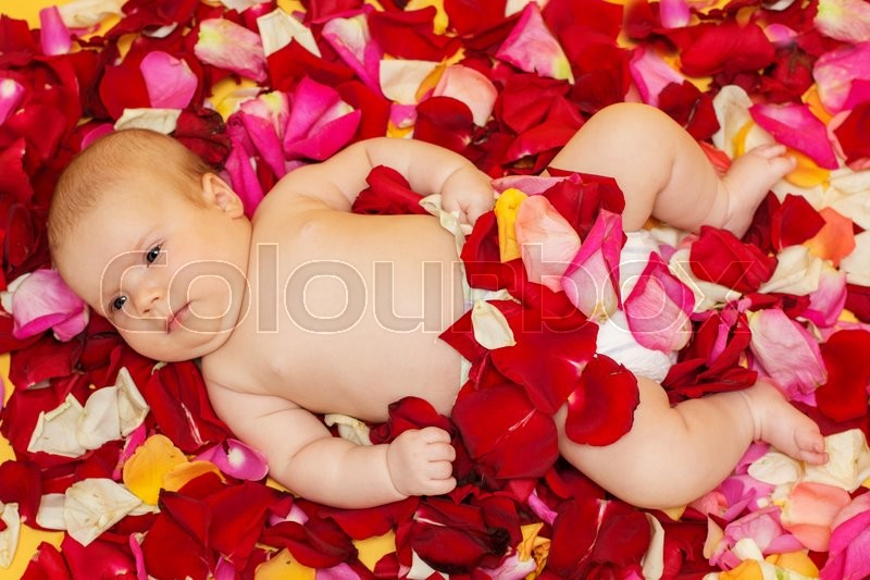 Adorable infant baby girl lying in pink, red and yellow rose petals, studio, stock photo