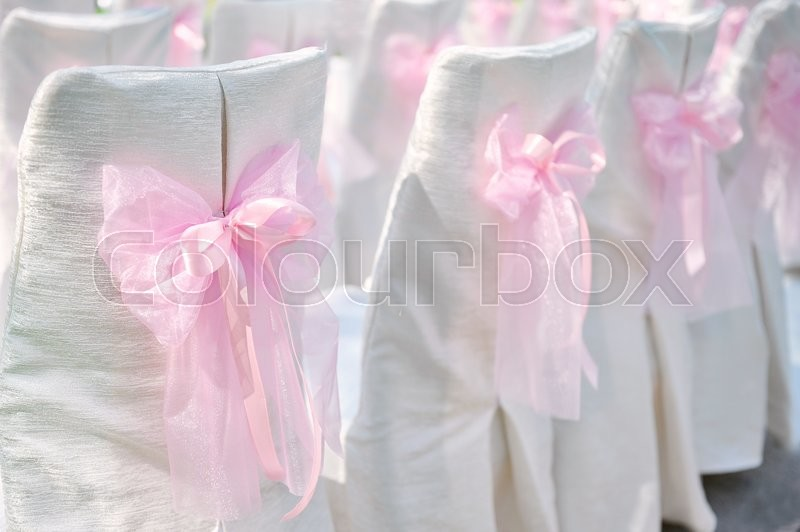 Decoration on wedding chairs pink bow, stock photo