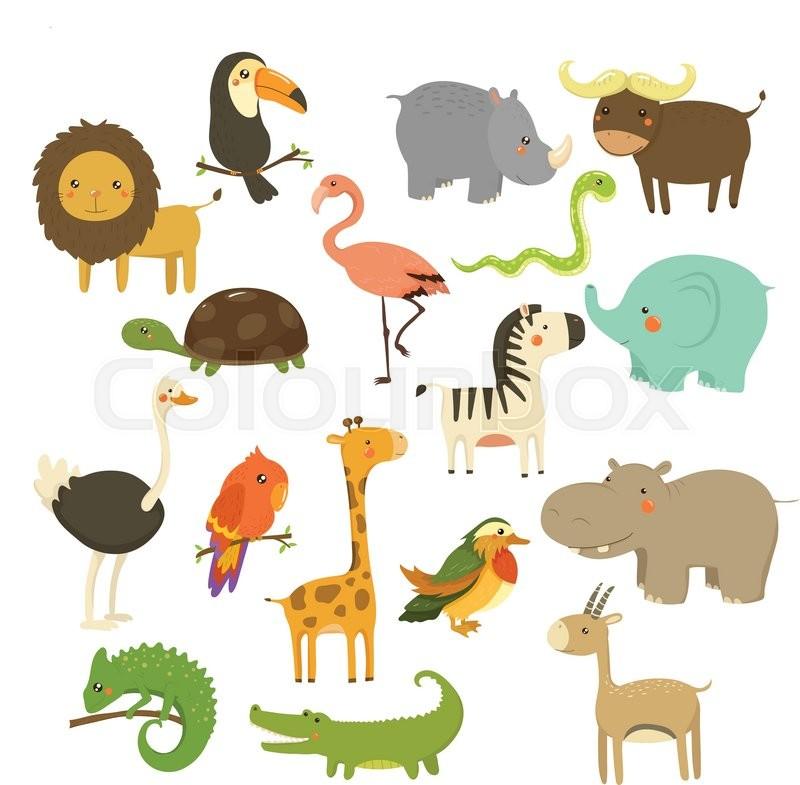 da struds animal dyr dyreliv strudse