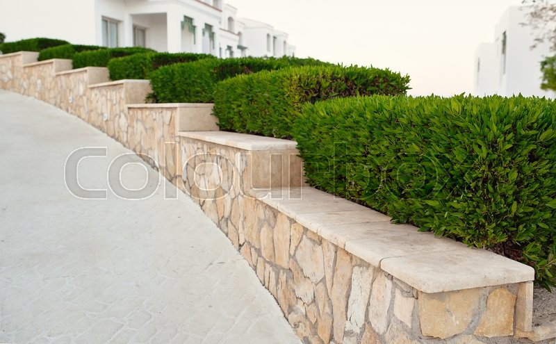 Landscape design. Nicely trimmed bushes at the front yard. Empty street and great quiet neighborhood, stock photo