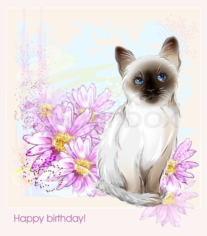 Birthday Card With Thai Kitten And Gerberas Stock Vector Colourbox