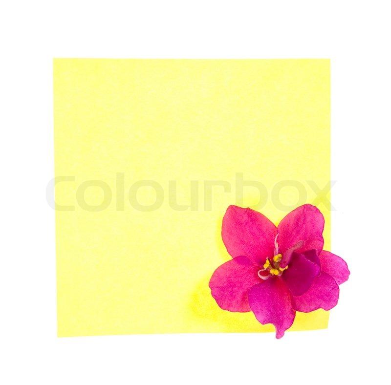 yellow note mit blume auf wei en hintergrund stockfoto colourbox. Black Bedroom Furniture Sets. Home Design Ideas