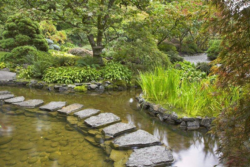 Ein weg aus der nassen steine durch einen teich im for Steine im teich