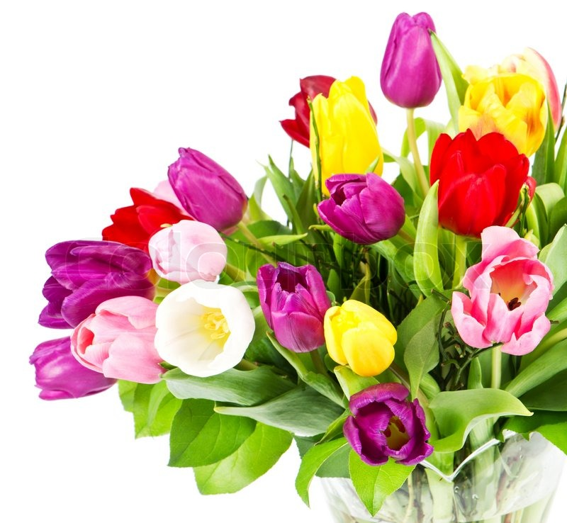 how to keep a bouquet of flowers fresh