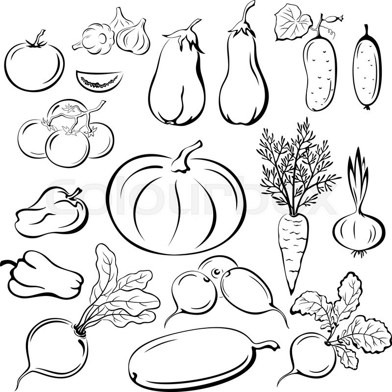 D Line Drawings Vegetables : Set vegetables black outline pictograms isolated on white