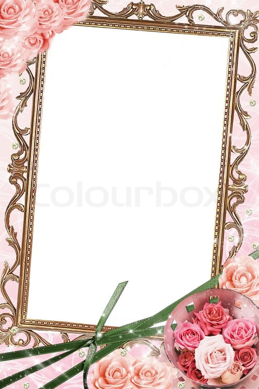 Frame with beautiful rose | Stock Photo | Colourbox