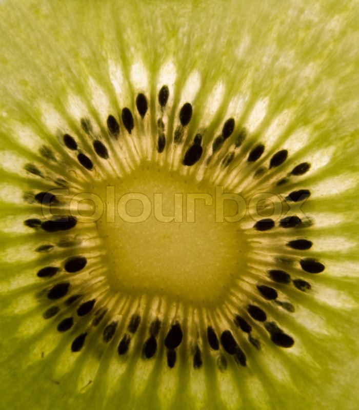 kiwi fruit how to tell when ripe