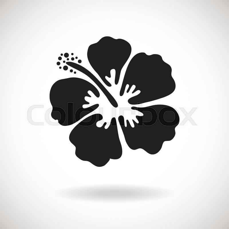 Black Hibiscus Flower On White Stock Vector Colourbox