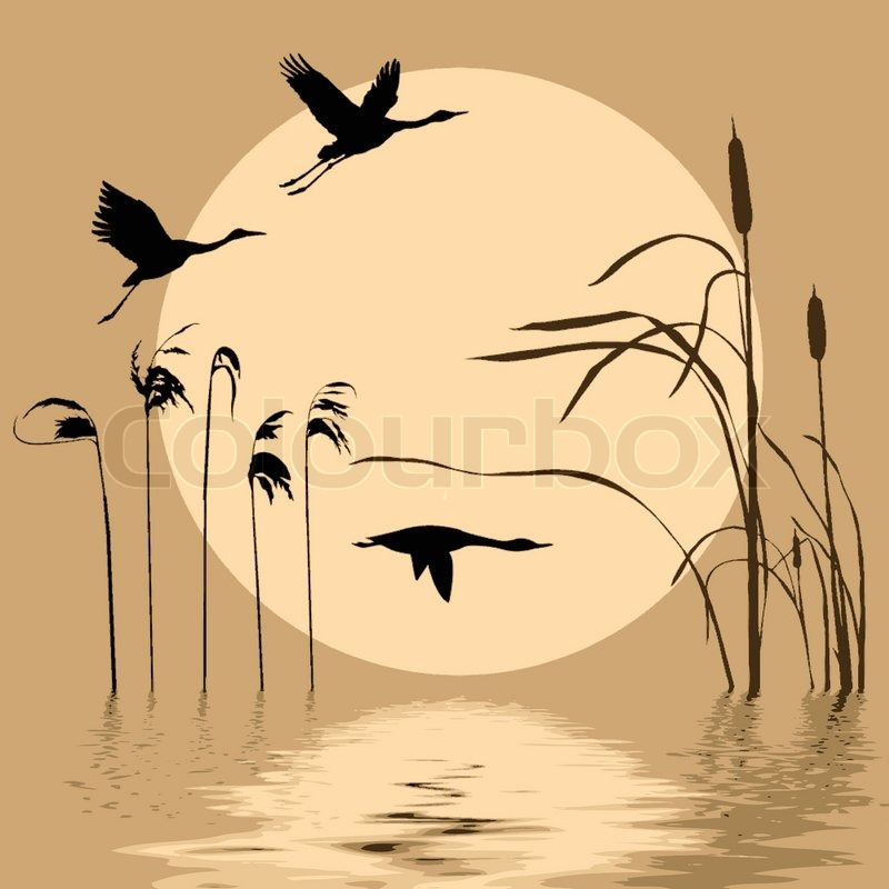 Drawing Flying Birds On Background Sun Stock Vector