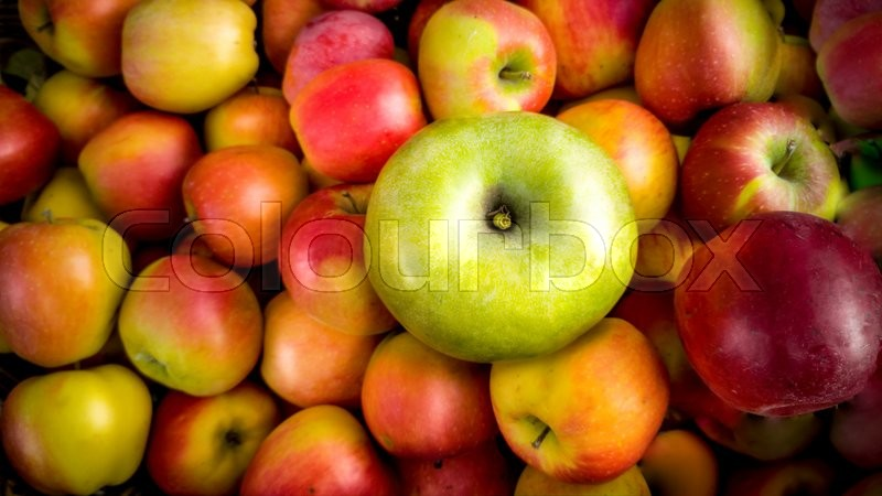 Closeup photo of one green apple lying on pile of red apples, stock photo