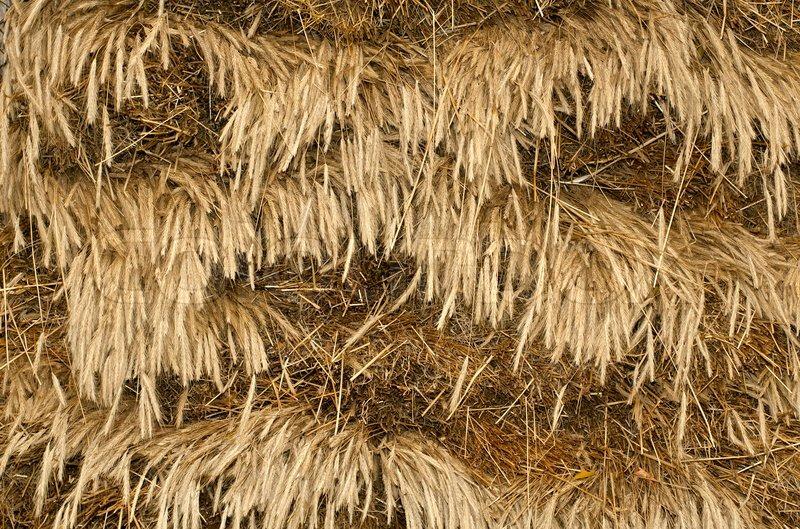 Straw background | Stock image | Colourbox