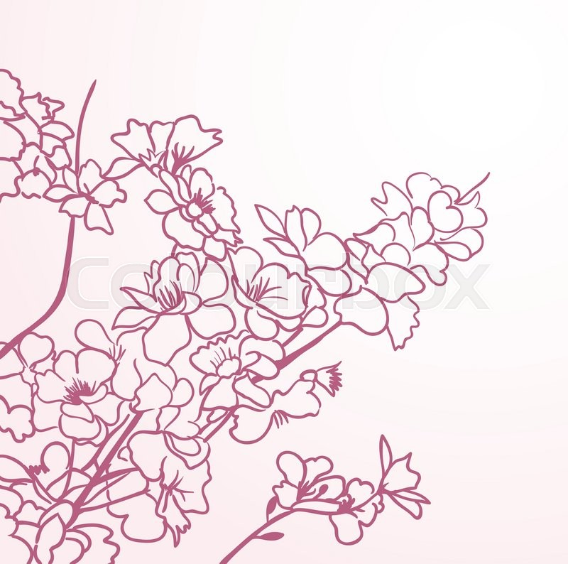 Red sakura flowers anstract lines Stock Vector Colourbox